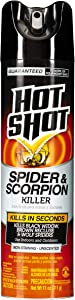 Hot Shot Spider & Scorpion Killer, Aerosol, 11-Ounce