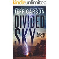 Divided Sky (David Wolf Mystery Thriller Series Book 13)