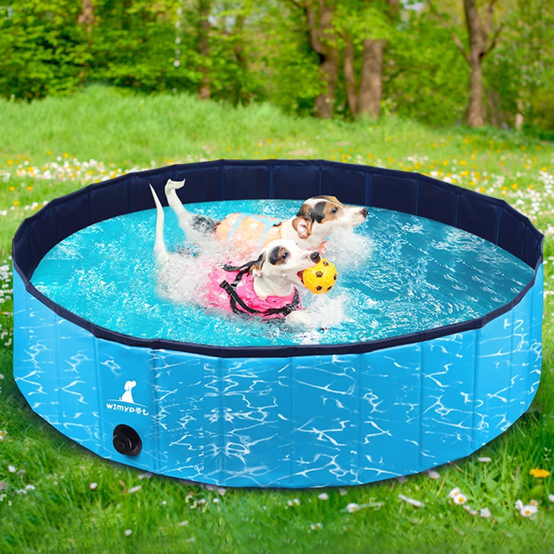 Manager Auslassen hüpfen pool für hunde amazon