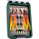 Goture Waterproof Dry Fly Fishing Flies Kit Dry Wet Flies Assortment Ideal for Bass Trout Panfish Carp Fly Lures in Case includes Bee Bird Nymphs Streamer 16/24 pcs