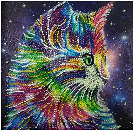 Amazon Com Franterd Lovely Animal Cat Special Shaped Diamond Painting Kits For Adult Kids Diy Handmand Partial Drill Cross Stitch Kits Crystal R Sports Outdoors