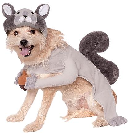 Rubies Costume Company Squirrel Pet Costume Medium  sc 1 st  Amazon.com & Amazon.com : Rubies Costume Company Squirrel Pet Costume Medium ...