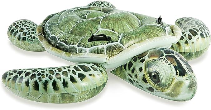 Amazon.com: Intex realista Tortugas de mar de impresión ...