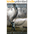 Wind Warrior (World Aflame Book 1)