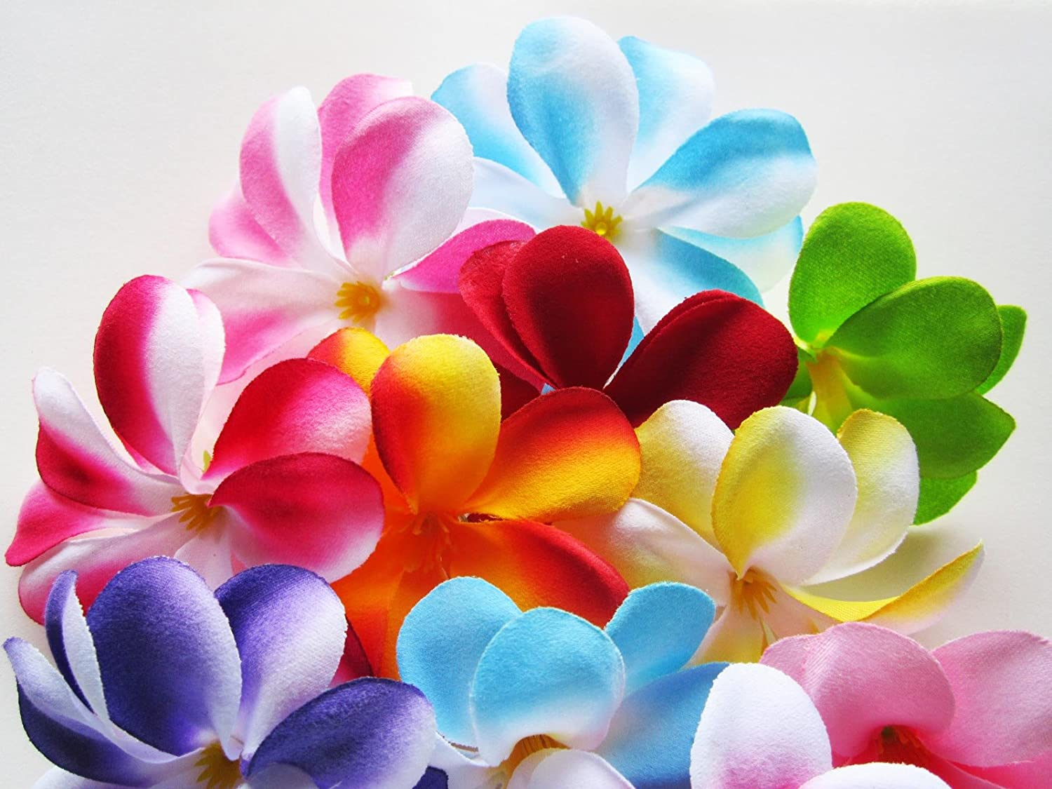 Amazon 100 Assorted Hawaiian Plumeria Frangipani Silk Flower