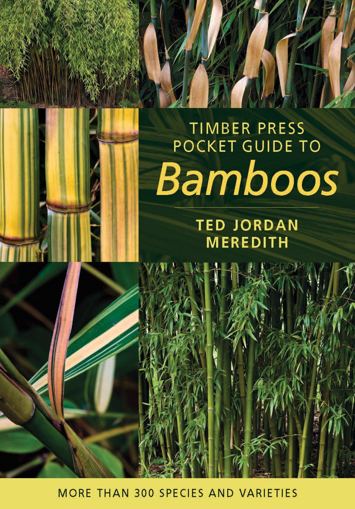 Timber Press Pocket Guide To Bamboos Ted Jordan Meredith