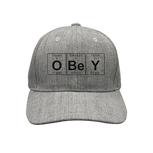 e9acbce9dfe Elements Obey Woolen Peak Cap Snapback Hat Summer Hats at Amazon ...