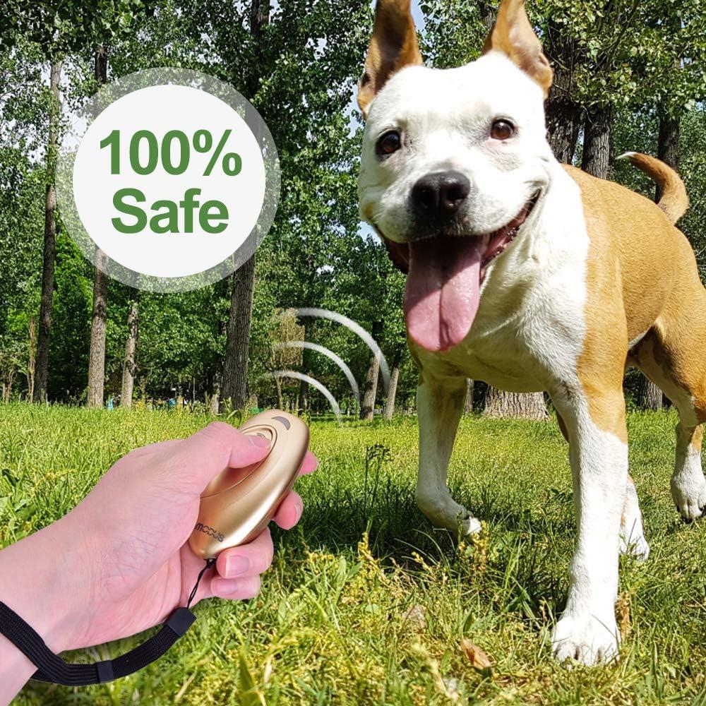 Controlador de Perros Seguro e Indoloro CYWEB Dispositivos Antiladridos para Perros Port/átil Ultras/ónico Adiestramiento 2 en 1 Entrenamiento de Perros y Control de Ladridos