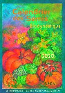 Calendrier Lunaire 2020 Coupe Cheveux.Amazon Fr Calendrier Lunaire Michel Gros Livres