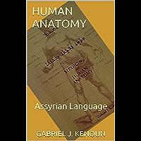 Human Anatomy: Assyrian Language (English Edition)
