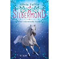 Silbermond: Eine stürmische Nacht: (Band 2) (German Edition)
