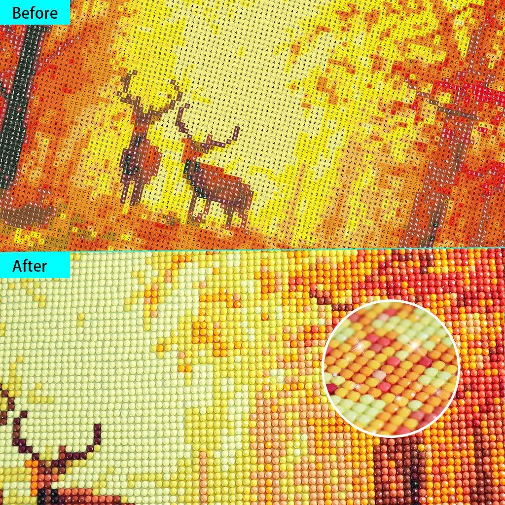 con Diamantini 5D 30 x 48 cm Decorazione per la casa DCIDBEI Kit per Pittura a Mosaico 5D