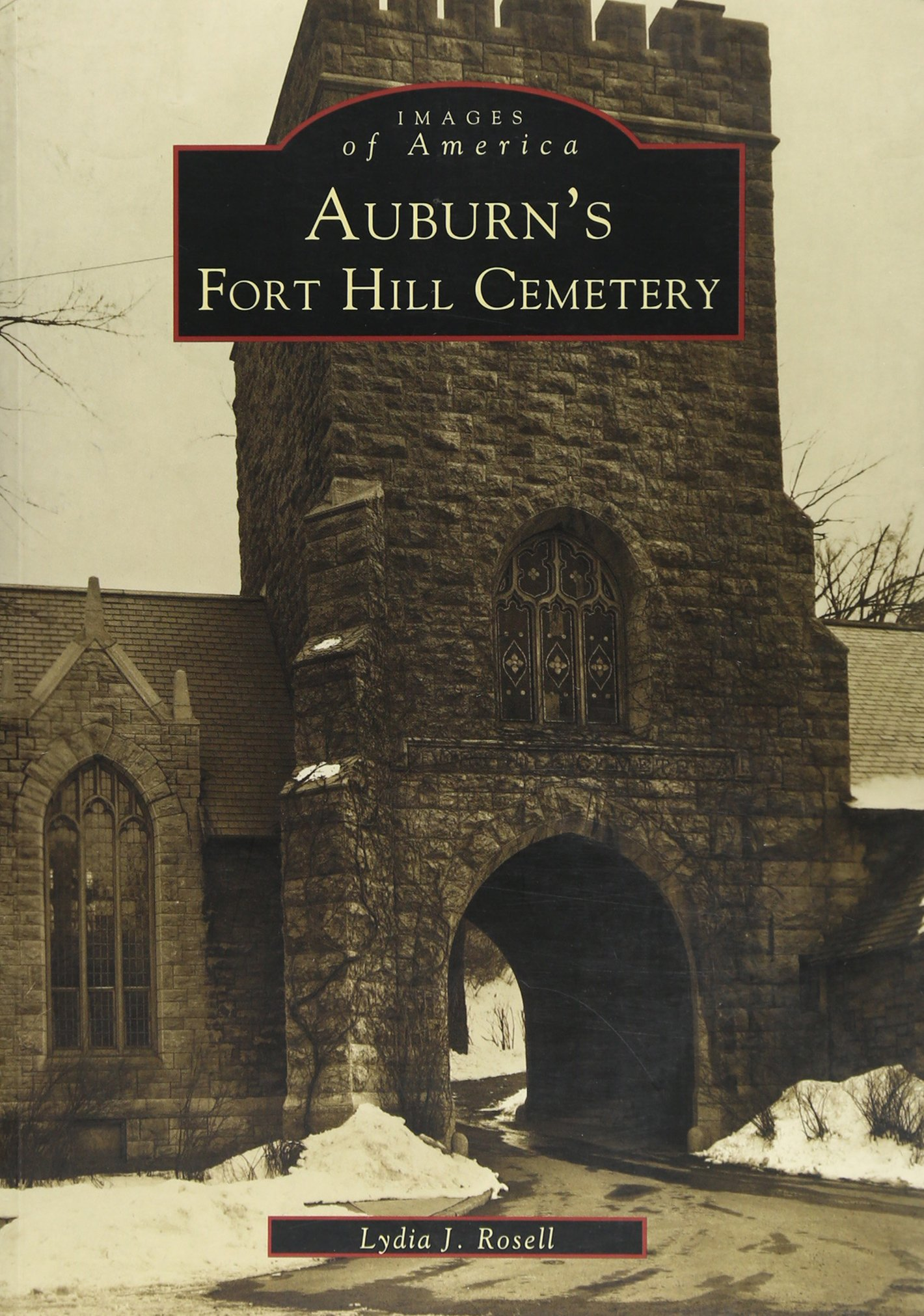 Amazon.com: Auburn\'s Fort Hill Cemetery (NY) (Images of America ...