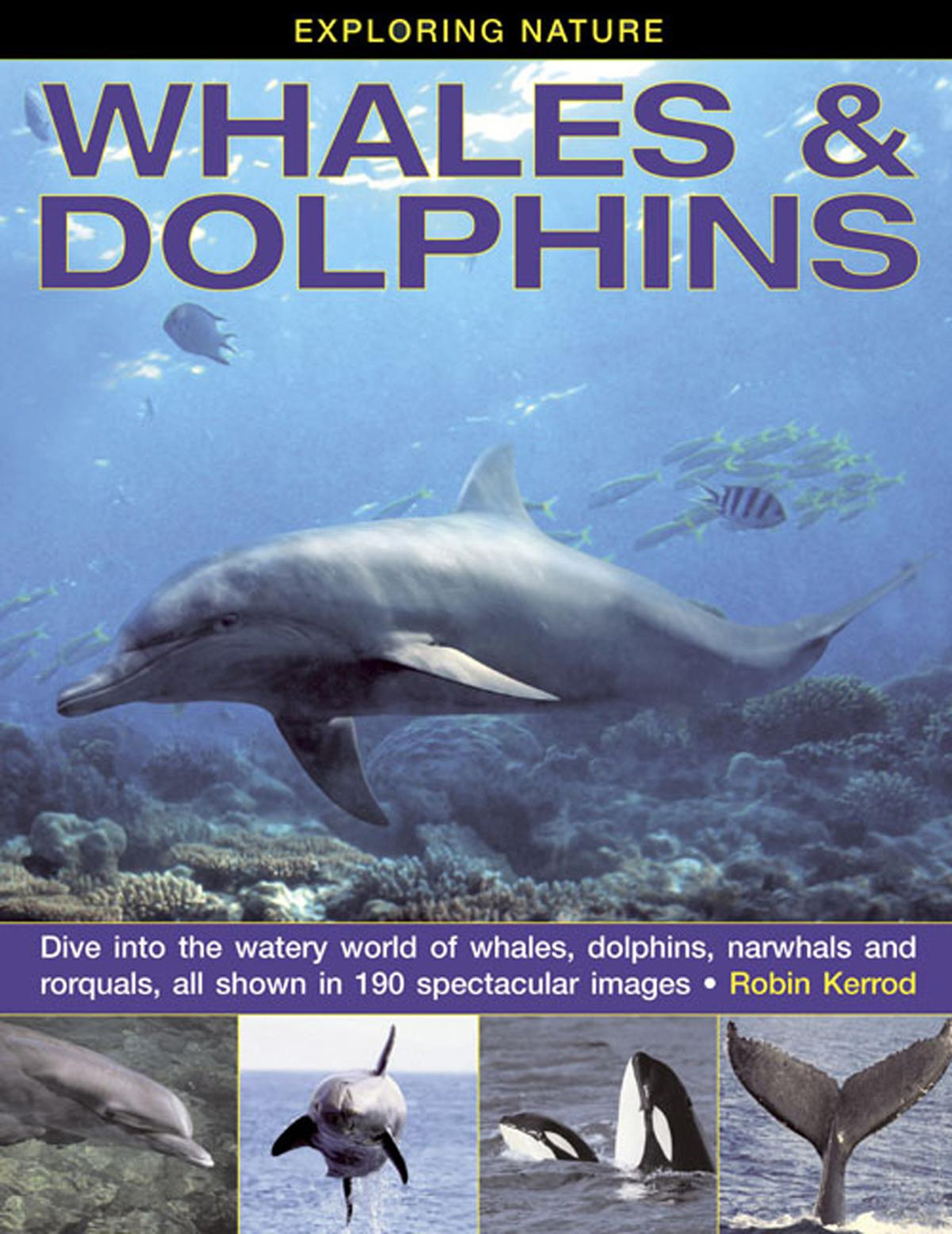 Download Exploring Nature: Whales & Dolphins: Dive Into the Watery World of Whales, Dolphins, Narwhals and Rorquals, All Shown in 190 Spectacular Images pdf