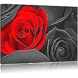 romantische rote rosen schwarz wei auf leinwand xxl riesige bilder fertig gerahmt mit. Black Bedroom Furniture Sets. Home Design Ideas