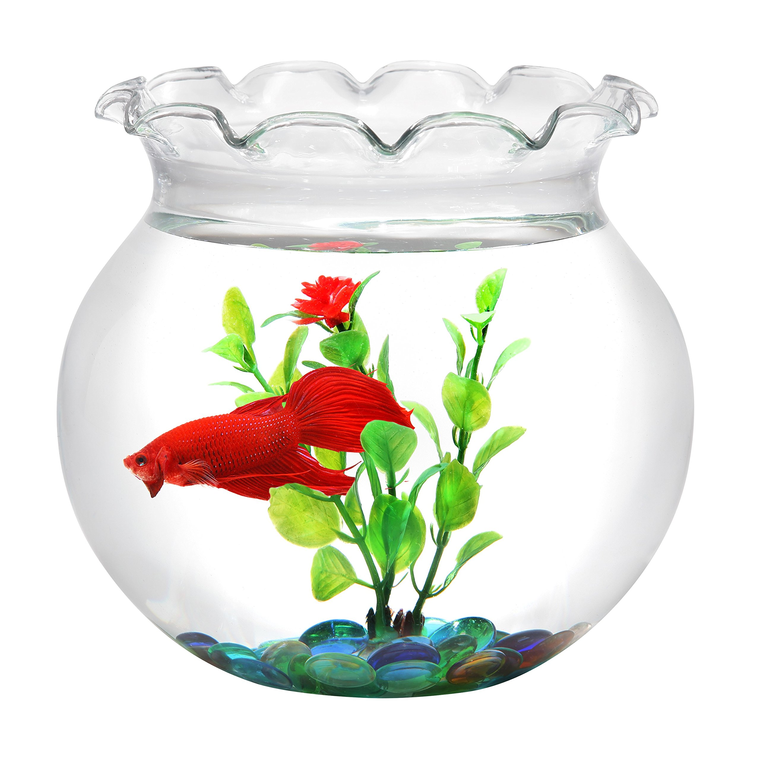 Koller Products BettaTank 1-Gallon Scalloped Fish Bowl with Marbles and Plastic Plant.