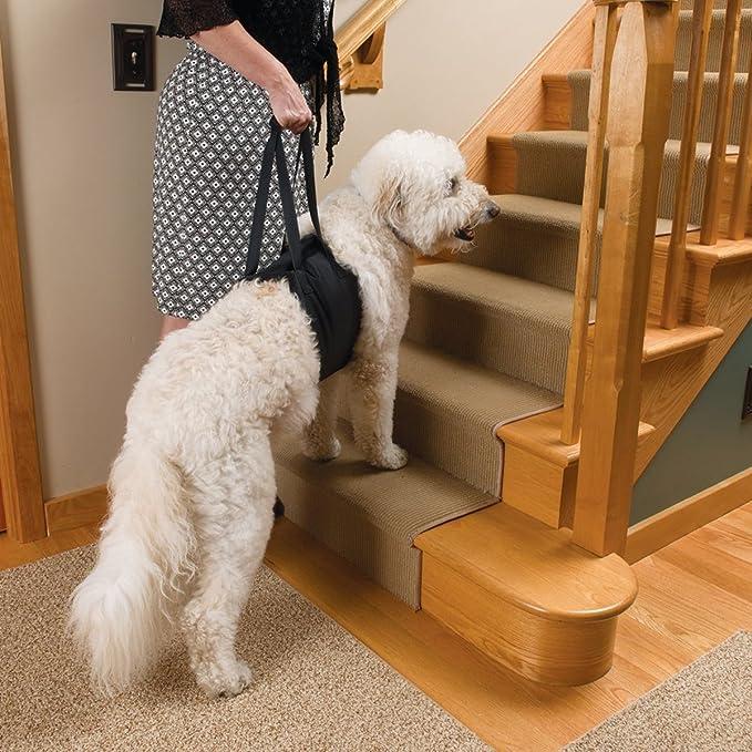 Perro elevación soporte arnés canino ayuda rehabilitación arnés ...
