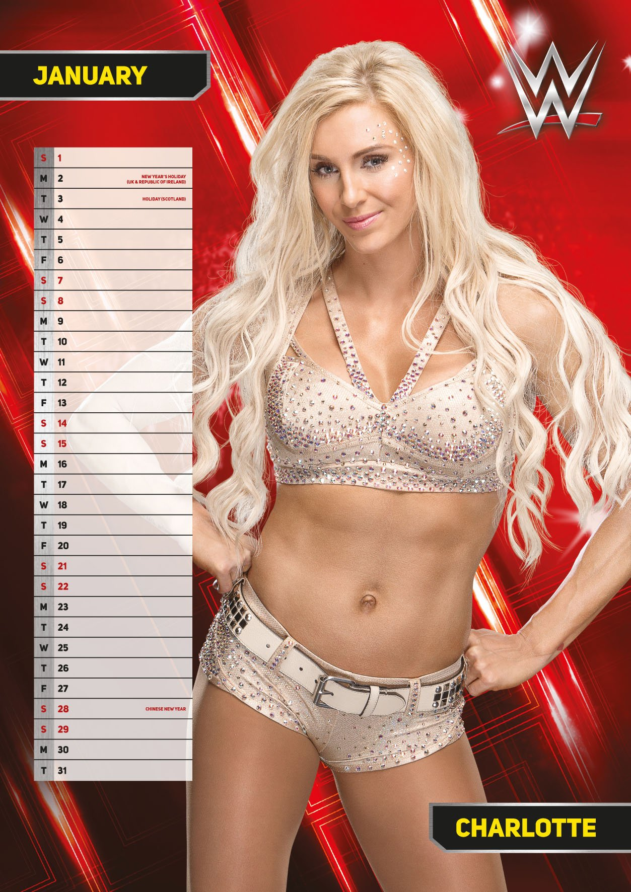 World Wrestling Divas Women Official 2017 Calendar - A3 Wall