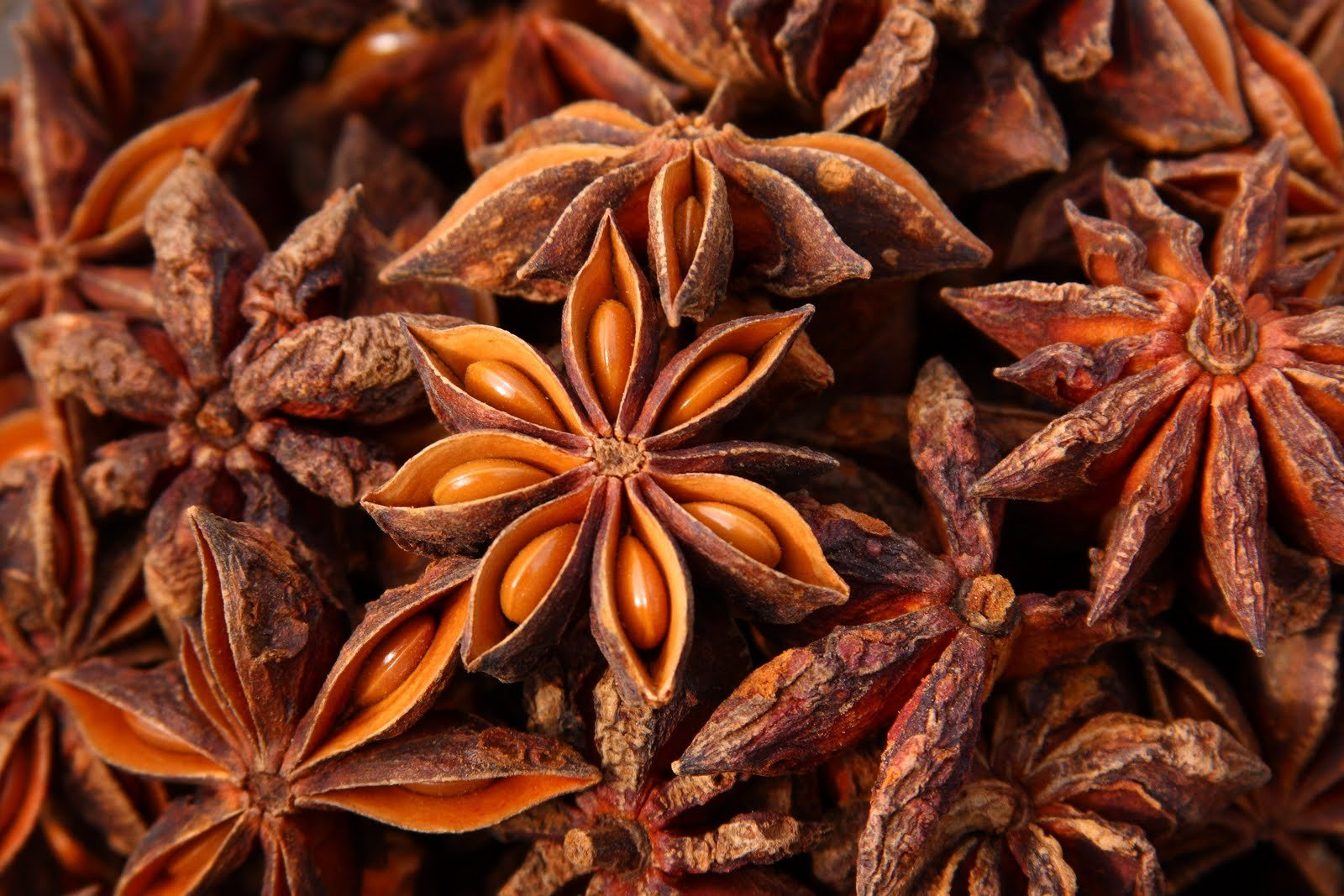 Spicy World Star Anise 3 Ounce