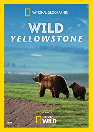 Amazon com: Wild Yellowstone: None: Movies & TV