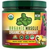 USDA Certified Organic Pre Workout Powder - Natural Pre Workout and Organic Energy Supplement - Non-GMO, Paleo, Gluten Free, Plant Based, Vegan Pre workout for men and women– Pineapple Coconut- 160g