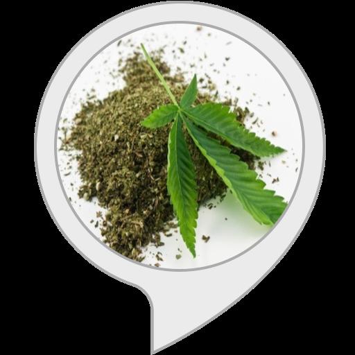 THC na veia
