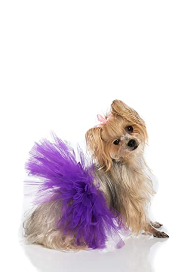 PAWPATU Tulle Tutu for Dogs or Cats Medium White