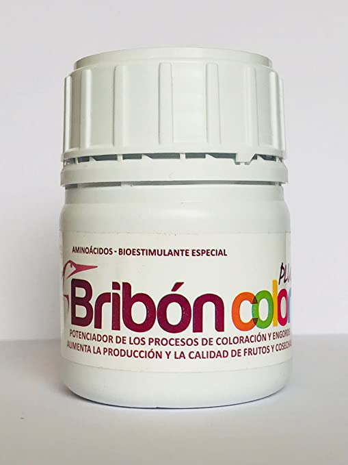 BRIBON stc. ® 100 ml. Nano Concentrado (10.000 m2). Potente ...