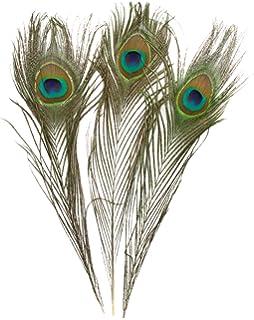 Amazon.com: Leegoal 100 Pcs Peacock Feathers 10