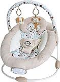 Bebe Style Comfiplus Floating Baby Cradle Bouncer