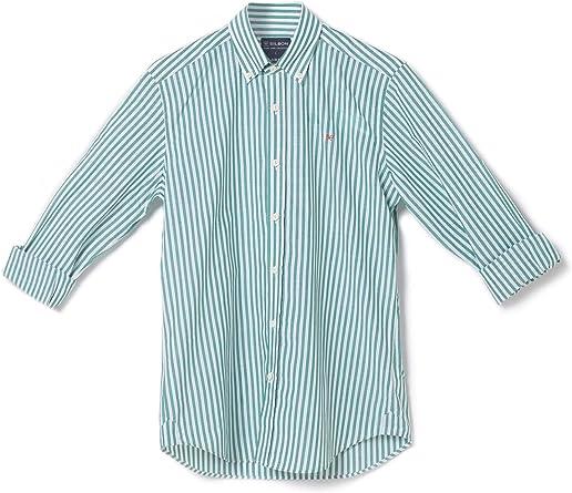 SILBON - Camisa Sport Popelin Raya Verde para Hombre: Amazon.es: Ropa y accesorios