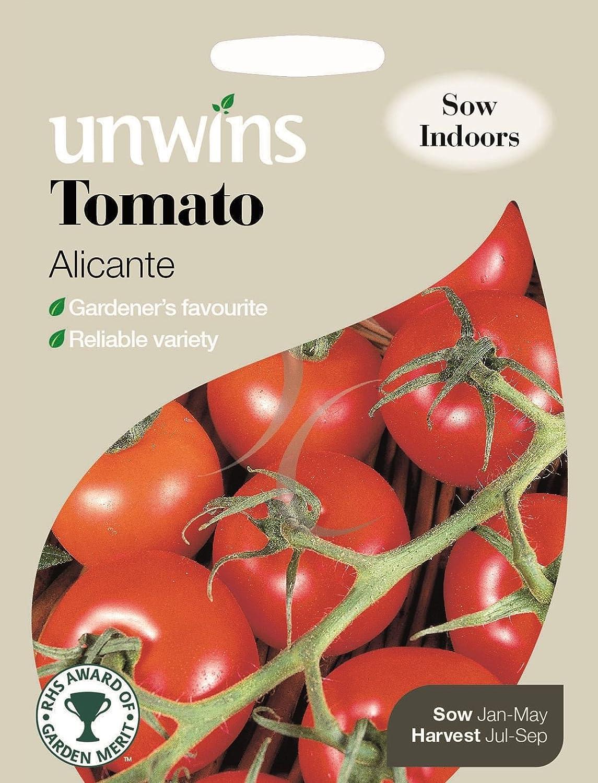 Unwins Pictorial paquete - Alicante Tomate - 50 semillas: Amazon ...