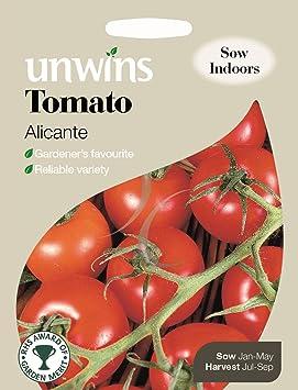 Unwins Pictorial paquete – Alicante Tomate – 50 semillas