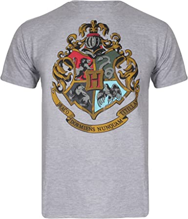 Color Gris T-Shirt Harry Potter
