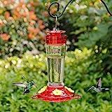 Shrdaepe Hummingbird Feeder, Glass Bottle Bird Feeders, 5 Feeding Ports, 10-Ounce Nectar Capacity (Red and Yellow)