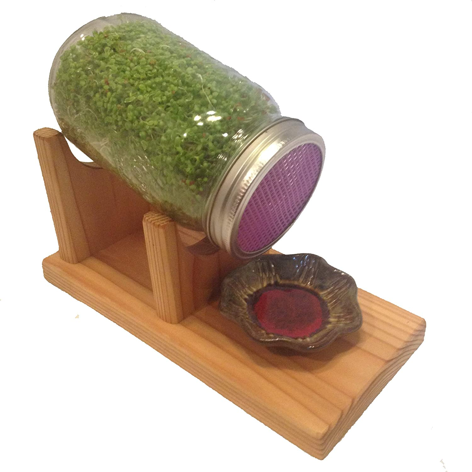 The Sprout Stand Sprouting Kit: Grocery & Gourmet Food