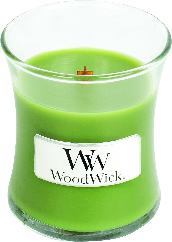 Woodwick 98115 Bougie dans Un Vase en Verre Ovale Bleu 7 x 7 x 8 cm