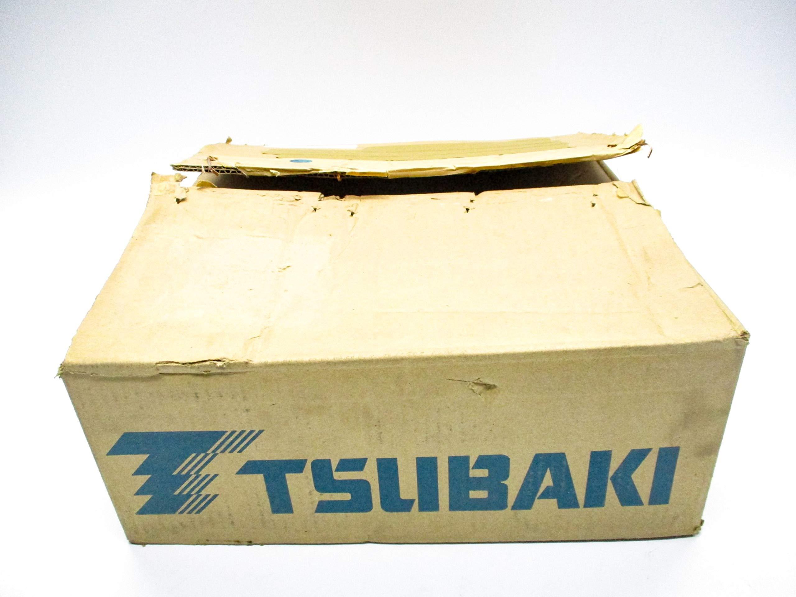TSUBAKI C2060H RIV6L/K-2 NSMP