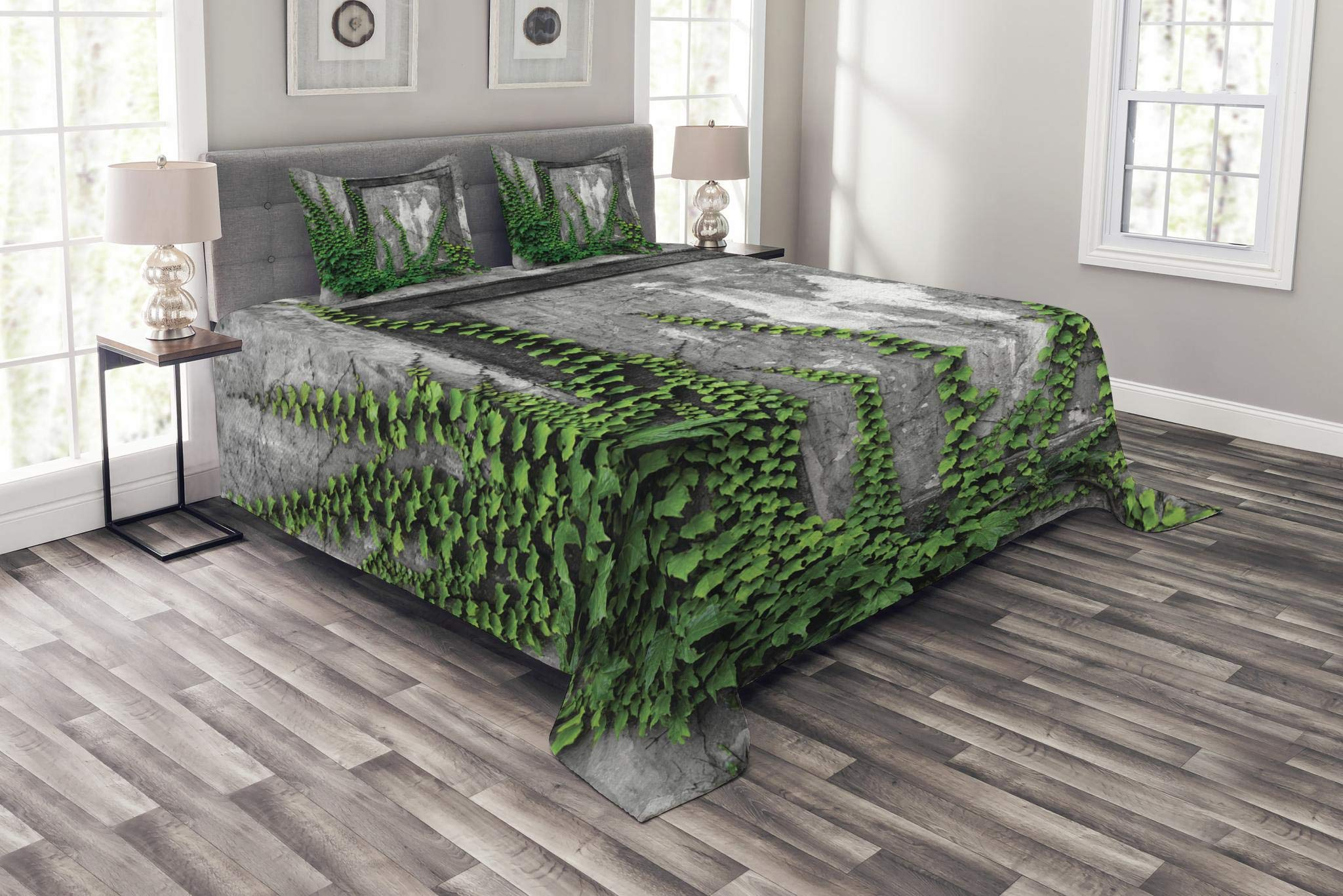 Lunarable Mystic Bedspread Set Queen Size, Ivy Plant on Wall Aged Antique Looking Picture Frame as a Window Creative Art, Decorative Quilted 3 Piece Coverlet Set with 2 Pillow Shams, Green and Grey