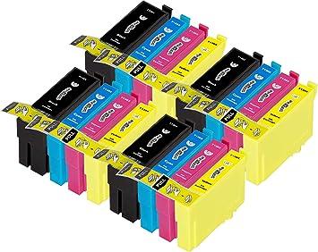 16 Douglas Inks Cartuchos de Tinta compatibles con Epson T1306 ...