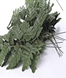 3 stems of LEATHER LEAF FERN 21 INDIVIDUAL LEAVES ideal for buttonholes and displays etc