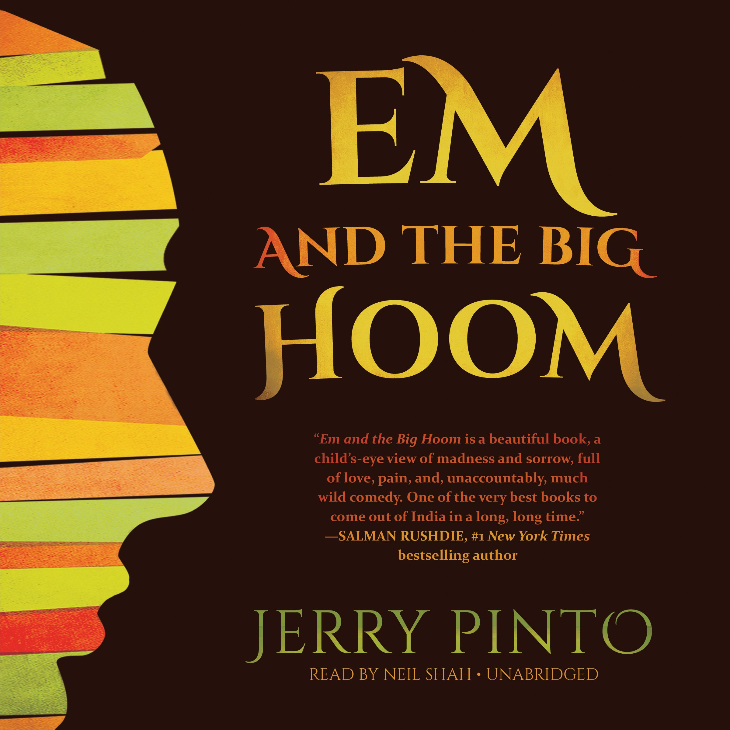 Em and the Big Hoom: Library Edition ebook