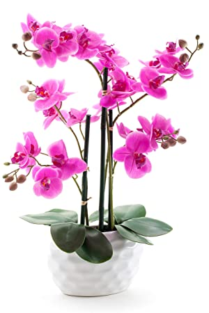 Decoline Kunstpflanze Orchidee XL mit Keramiktopf - ca. 53cm hoch (Blüten lila - Topf weiß)