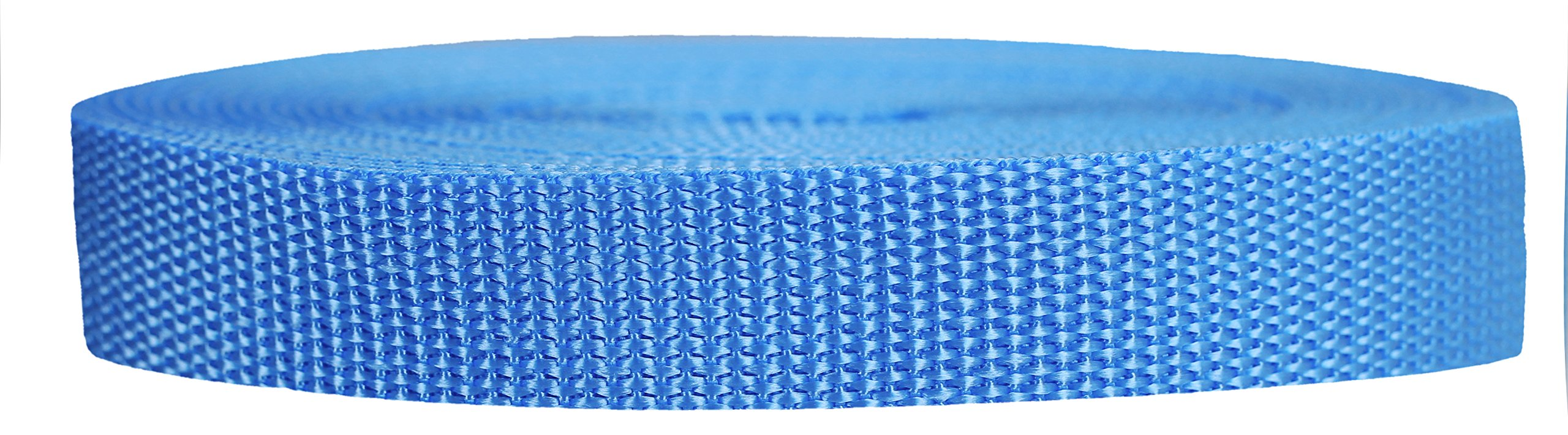 Strapworks Heavyweight Polypropylene Webbing - Heavy Duty Poly Strapping for Outdoor DIY Gear Repair, 3/4 Inch x 10 Yards, Powder Blue by Strapworks