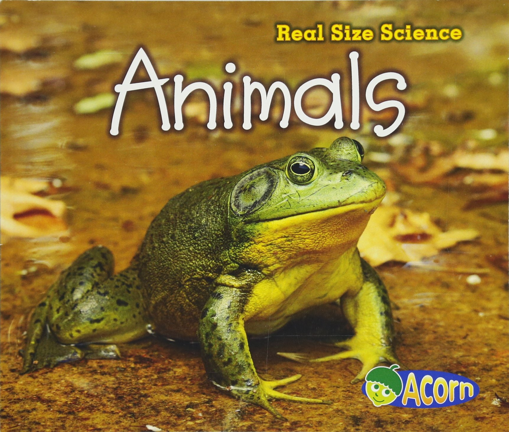 Animals: Real Size Science ebook