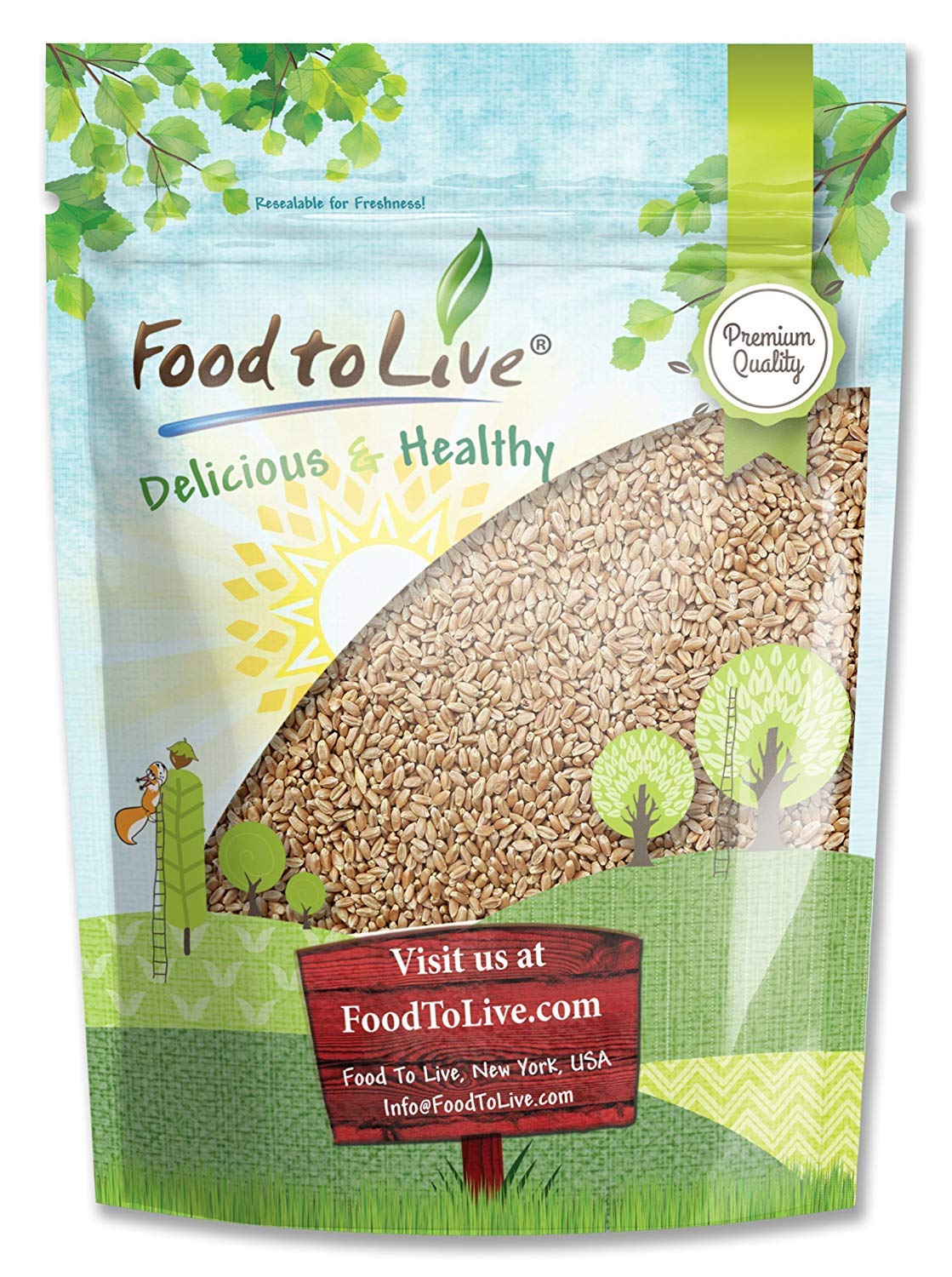 Wheat Berries, 1 Pound - Seeds for Sprouting, Wheatgrass, Bulk, Kosher, by Food to Live