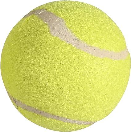 HTI 1 Pelota de Tenis Amarilla (Suelta) – Corte Central – 1394511 ...