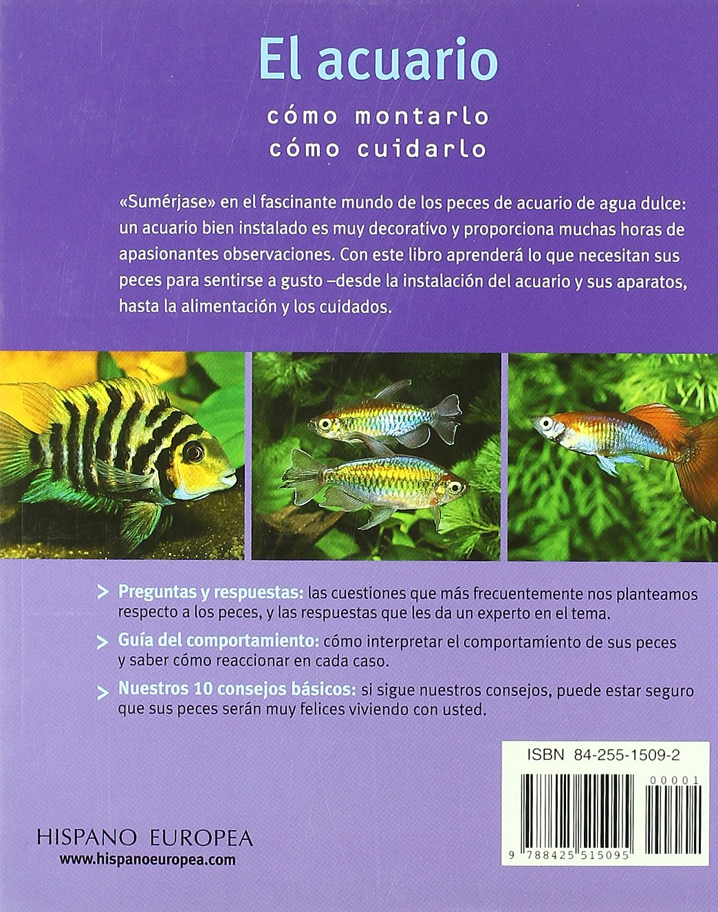 El acuario sencillo y fascinante/The simple and fascinating aquarium (Spanish Edition): Peter Stadelmann: 9788425515095: Amazon.com: Books