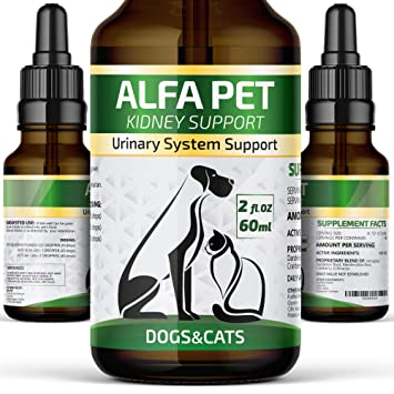 Alfa Pet UTI Treatment for Cats and Dogs/Kidney Support for Dogs and  Cats/Kidney Remedy with Cranberry/Bladder Urinary Track Support/Natural  Support