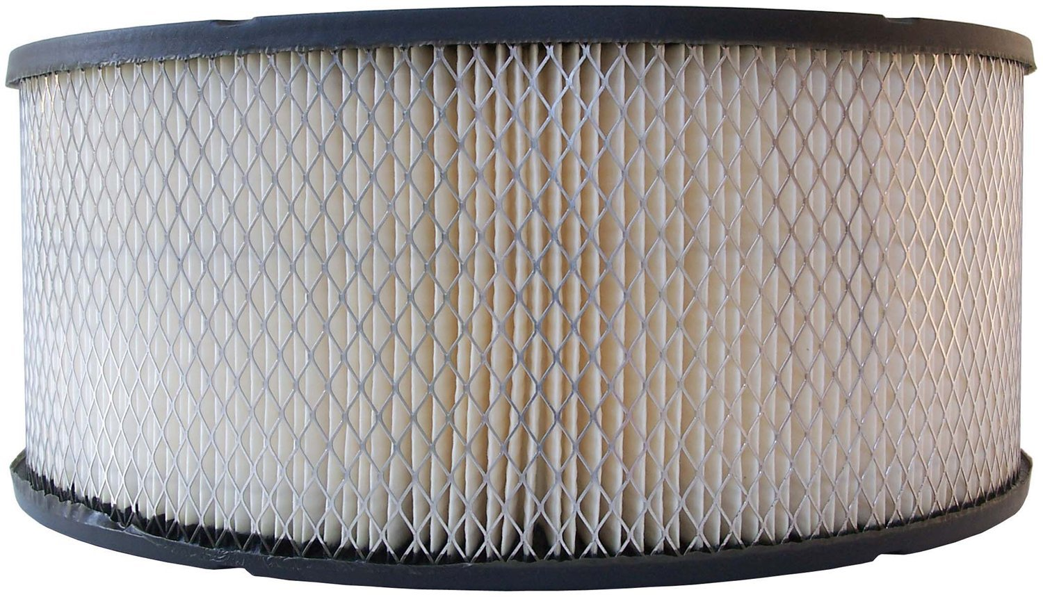 Luber-finer AF753 Heavy Duty Air Filter